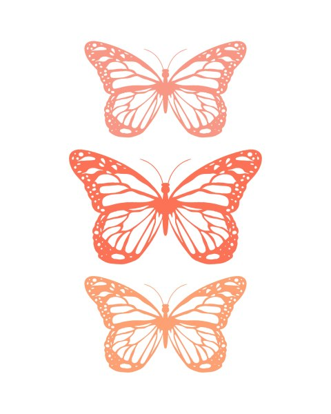 Spring-Butterfly-Coral