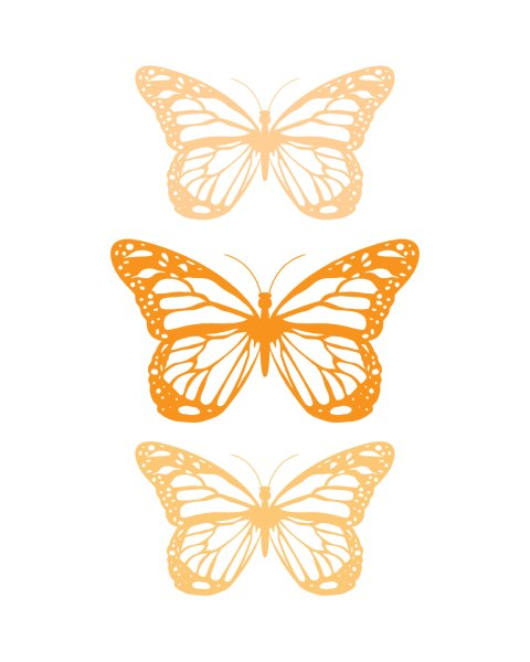 Spring-Butterfly-Orange