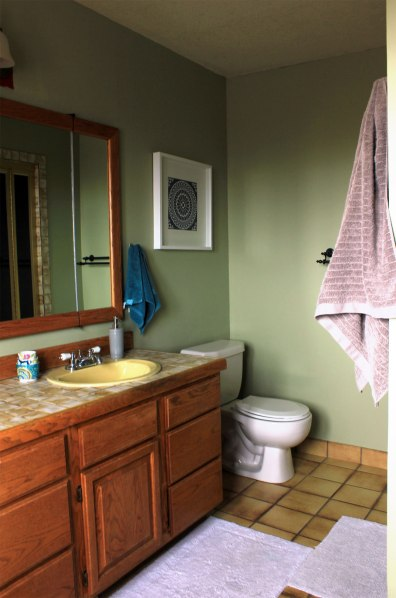 Master-Bath-One-Year-Later