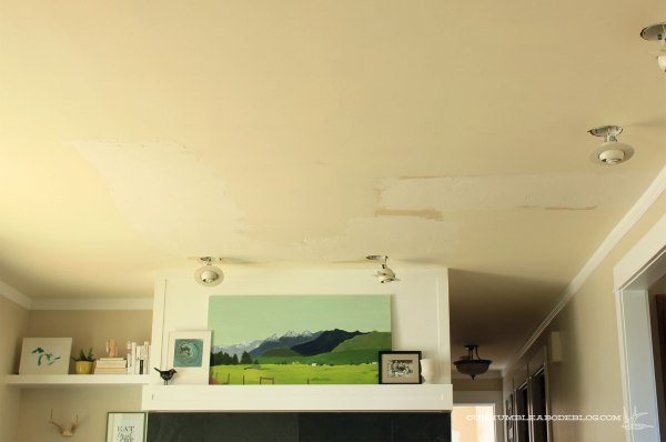 Landscape-Painting-and-Ceiling-to-Finish