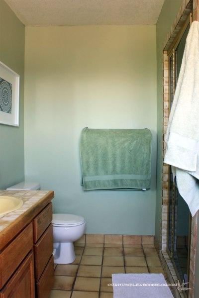 Master-Bath-End-Wall