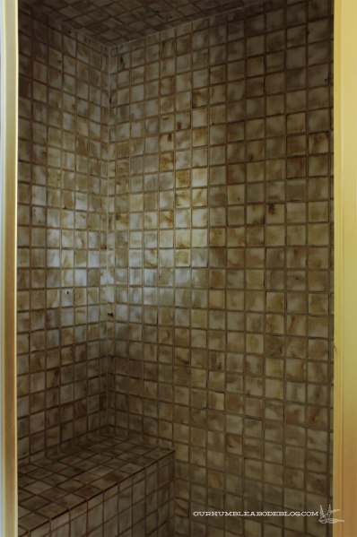 Master-Bath-Inside-SHower-Tile