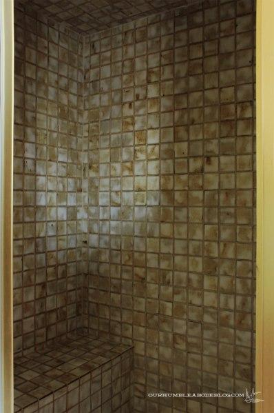 Master-Bath-Inside-SHower-Tile