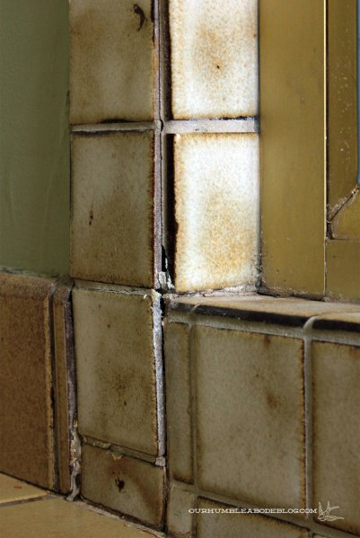 Master-Bath-Shower-Tile-Detail