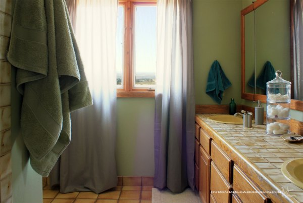 Master-Bath-Window-and-Vanity