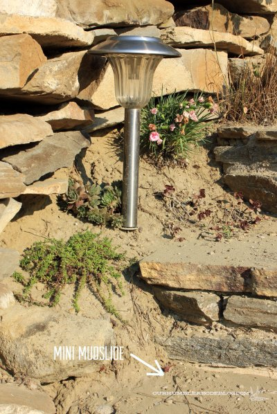 Rock-Stairs-Lower-Plants