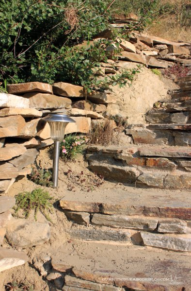 Rock-Stairs-with-Side-Plants
