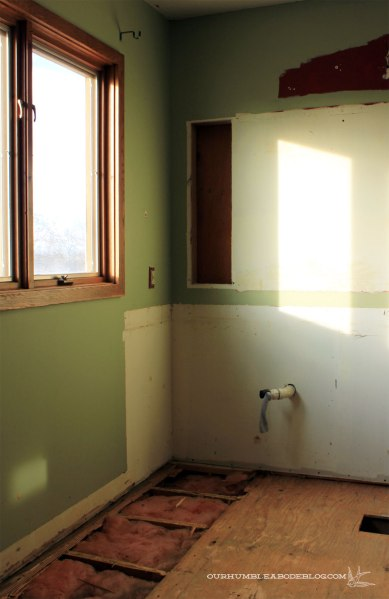 Master-Bathroom-Demo-Window