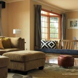 MCM-Sofa-in-Living-Room