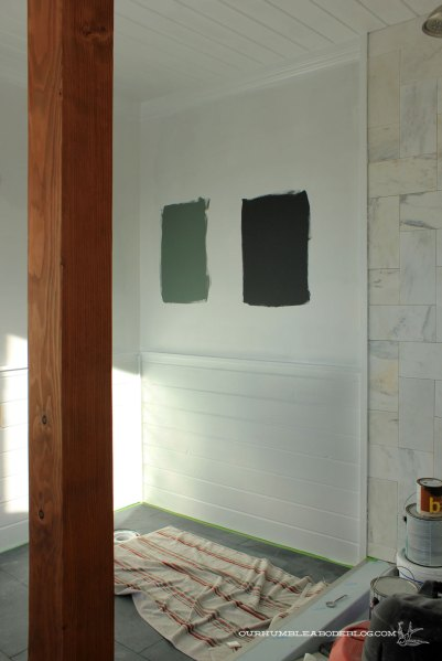 Master-Bath-Paint-Options-from-Door