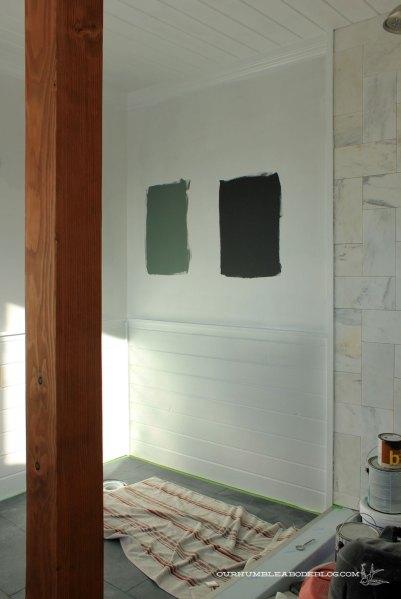 Master-Bath-Paint-Options-from-Door