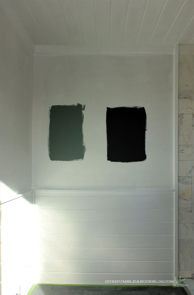 Master-Bath-Paint-Options-from-Window