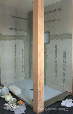 Master-Bath-Shower-Before-Tile