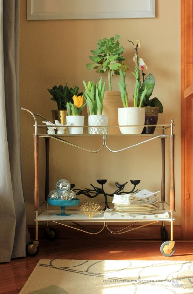 Cart-in-Dining-Room-with-Plants