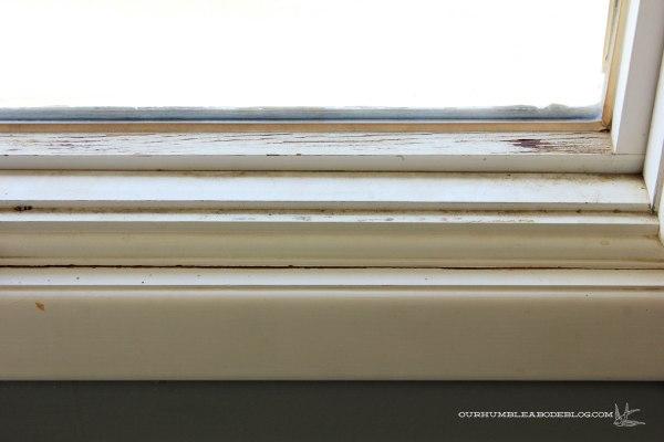 Master-Bedroom-Window-Condition