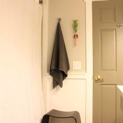Main-Bathroom-Shower-and-Door