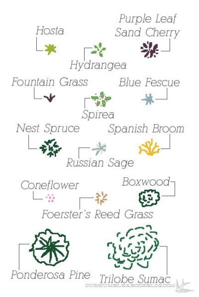Landscape-Plan-Plant-Key