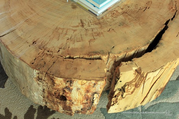 Stump-Coffee-Table-Large-Crack-Detail