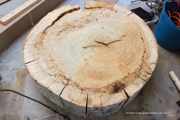 Stump-Coffee-Table-Sanded