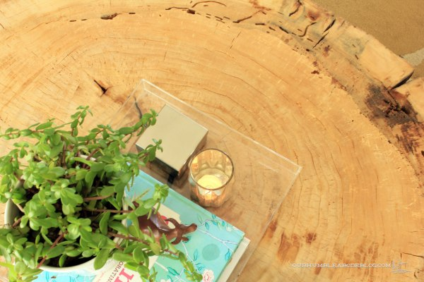 Stump-Coffee-Table-Top-Bug-Hole-Detail