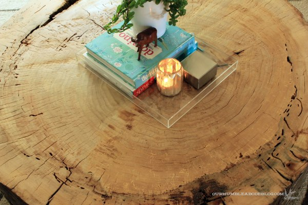 Stump-Coffee-Table-Top-Detail