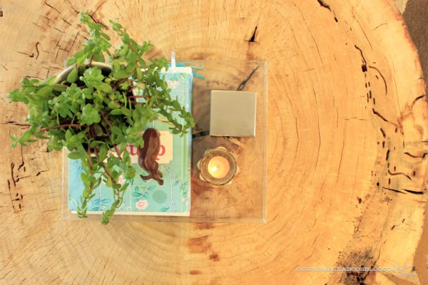 Stump-Coffee-Table-Top