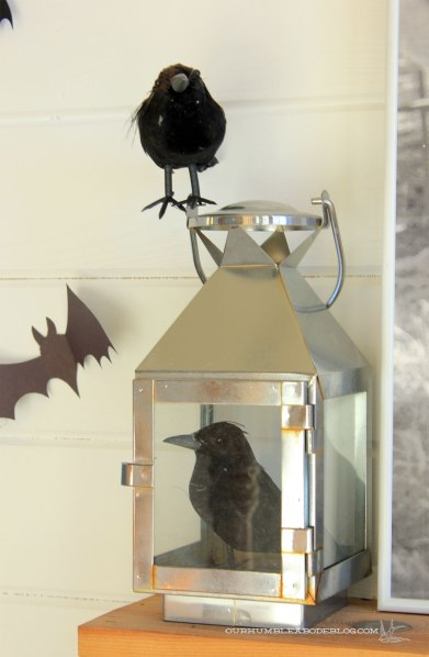 Halloween-Crows-in-Lantern