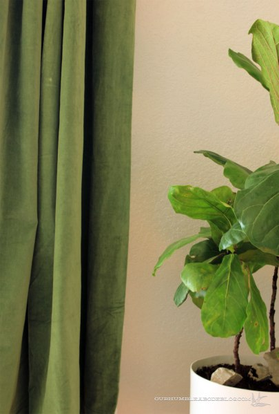 World-Market-Green-Curtains-Color-Closeup