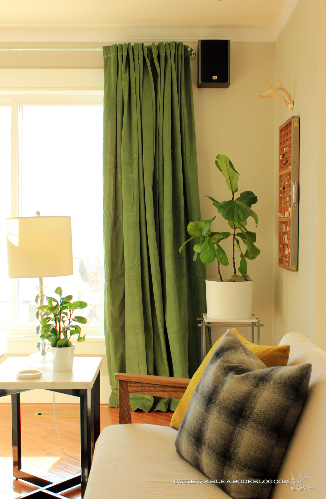 Green Curtains In Living Room By Sofas