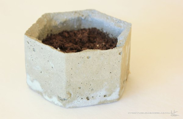 Native-Cast-Small-Planter-with-Dirt
