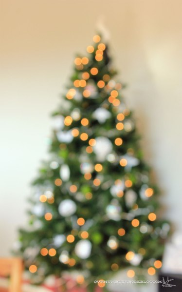 Christmas-Tree-Bokeh-Tree