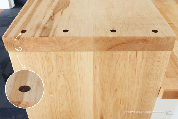 Bar-Top-Walnut-Screw-Cover-Plugs-with-Detail