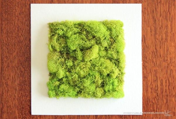 Moss-Art-Square