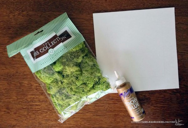Moss-Art-Supplies