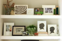 Family-Room-Shelf-Middle-and-Top