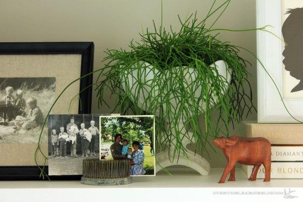 Family-Room-Shelf-Middle-Detail