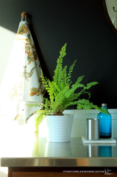 Fern-in-Master-Bathroom
