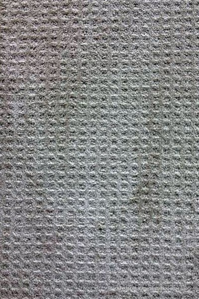 Home-Decorators-Texture-Pattern-Carpet-Sample