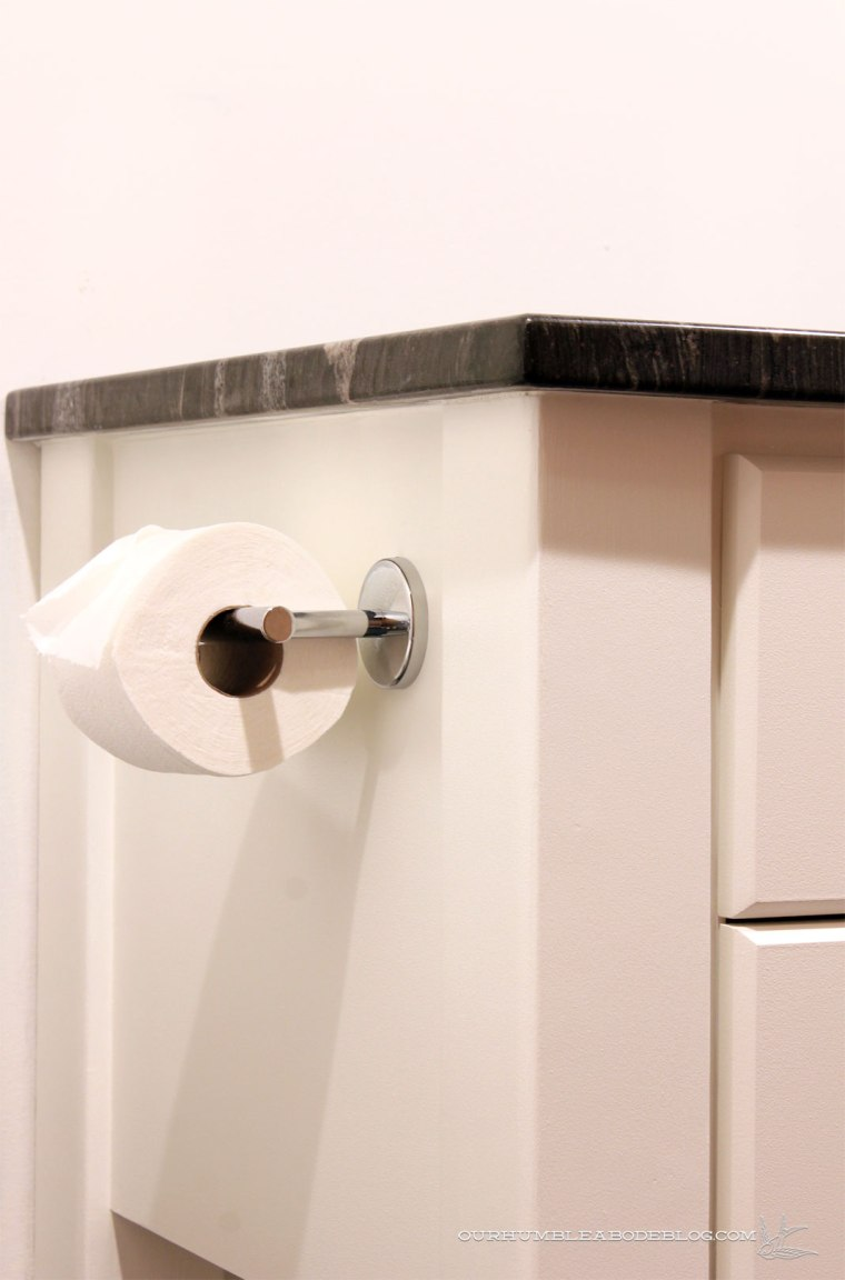 Basement-Bathroom-Vanity-Toilet-Paper-Side