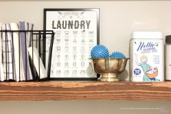 Laundry-Room-Chart-Detail