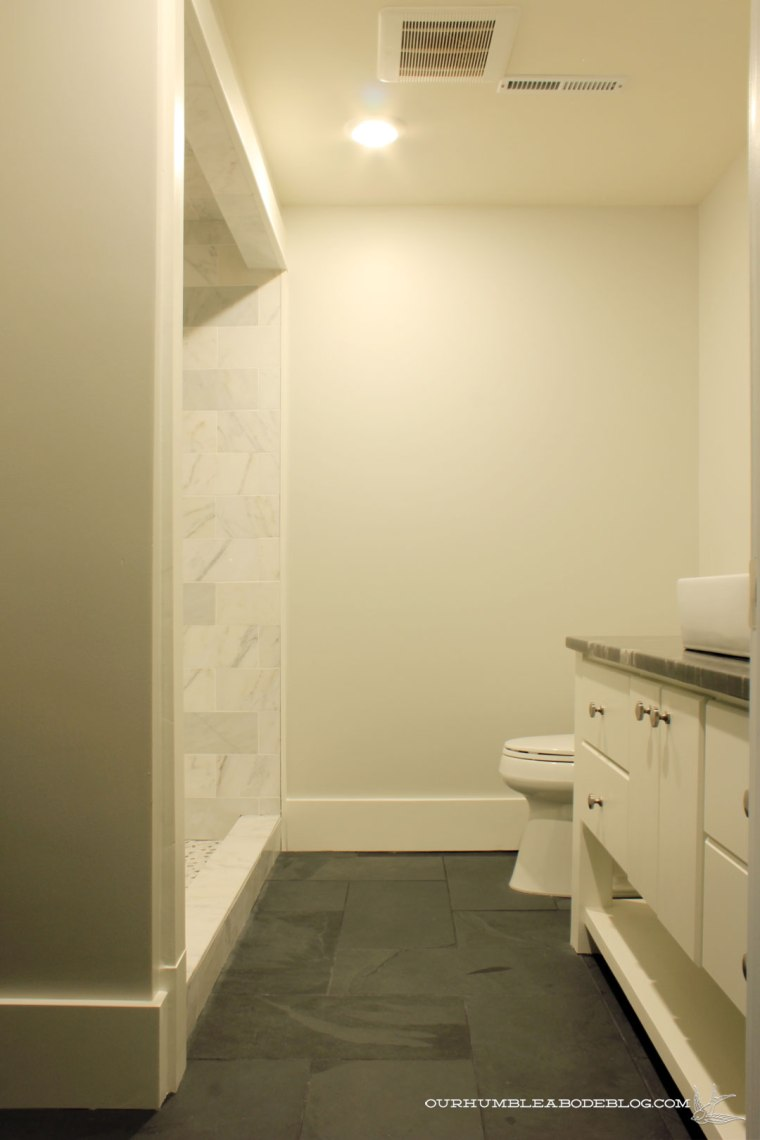 basement-bathroom-from-door-2