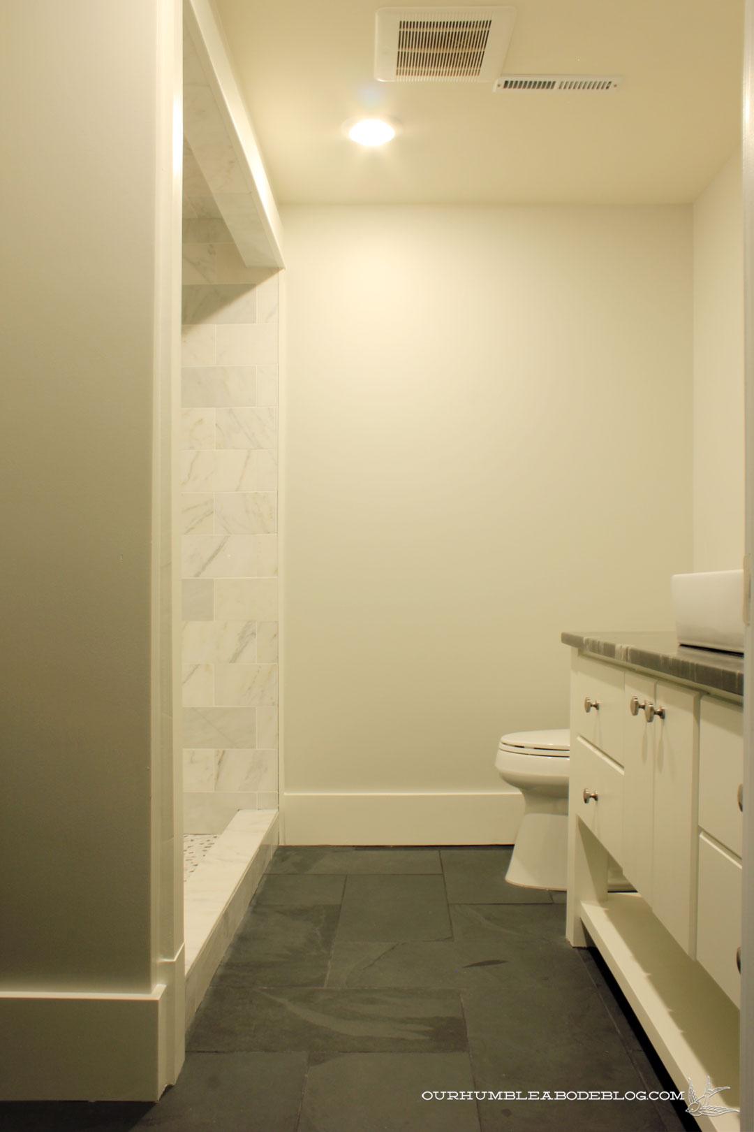 Basement Bathroom From Door 2