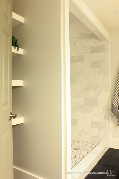 basement-bathroom-finished-from-door