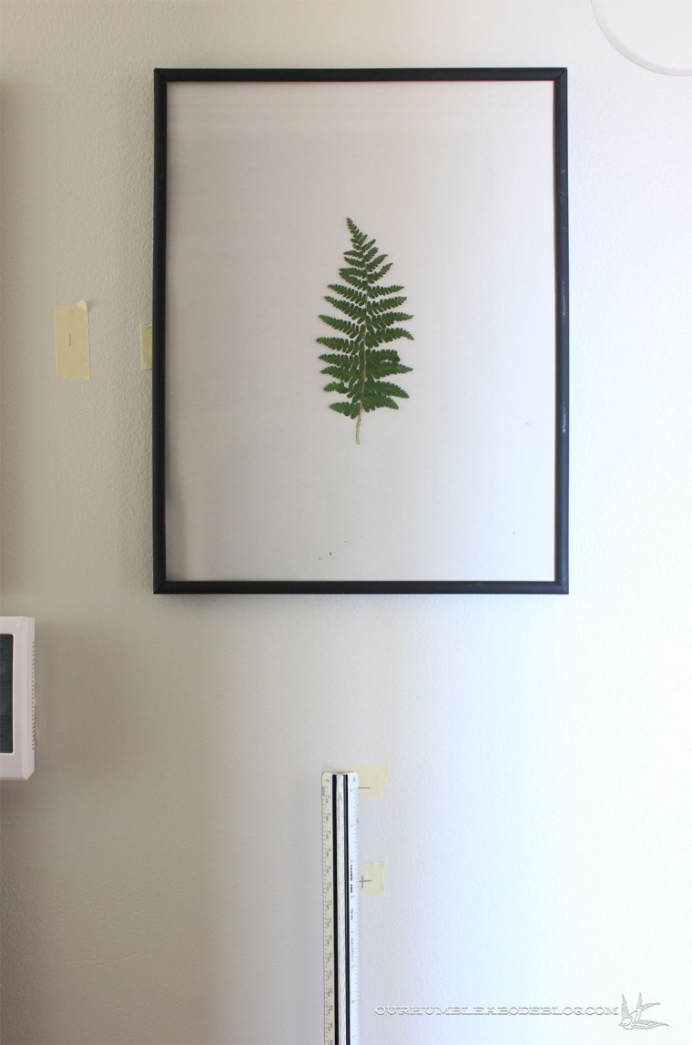 pressed-leaves-measuring-to-hang