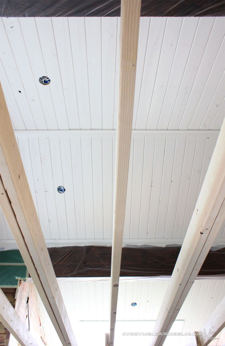 Pool-House-Ceiling-Primed-from-Below