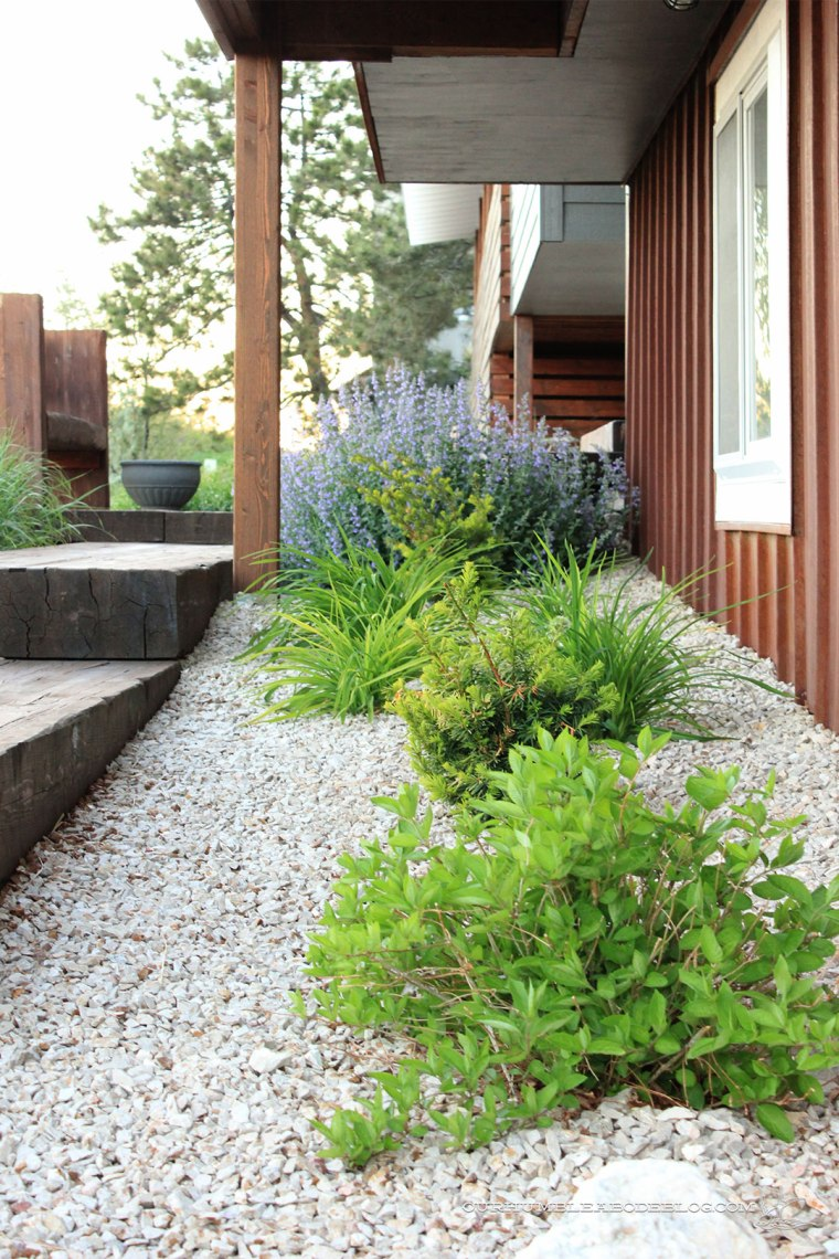Front-Entry-Plants-by-Walkway