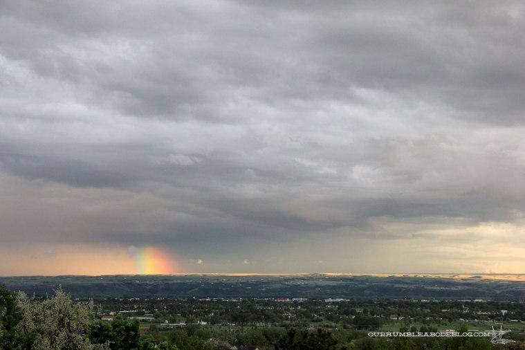 Front-Rainbow
