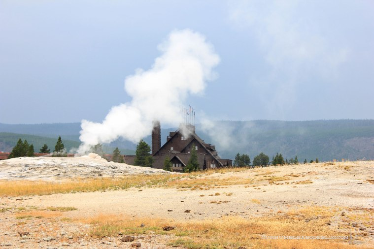 The Old Faithful Inn, built in 1903-1904, is the largest log structure in the world.