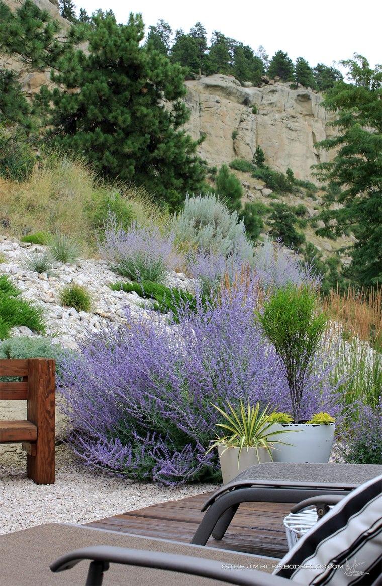 July-2018-Garden-Update-Back-Deck-Detail