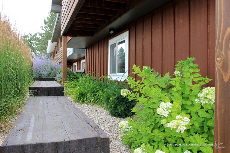July-2018-Garden-Update-Front-Walk-Plants